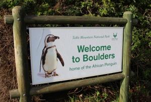 Boulders Beach, Table Mountain National Park
