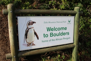 Boulders Beach, Table Mountain National Park